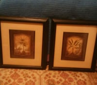 Two framed Palm Tree Pictures**SEE ALL I HAVE LISTED!