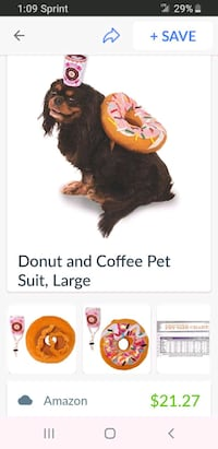 Donut and  coffee   Costume For a dog Pawtucket, 02861