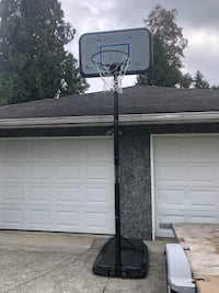 Basketball hoop Burnaby, V5E 1Y9