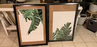 two green leaf plants painting 763 mi