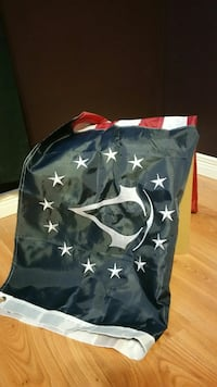 Assassin's Creed flag new
