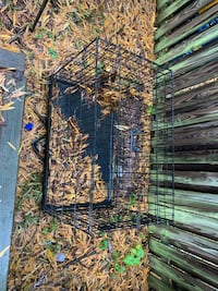 Dog crate cage Reston, 20191