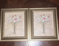 2 for $30 pictures with frames Surrey, V3W 4R4