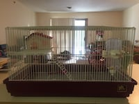 Multi level small animal cage with everything Rochester, 03867