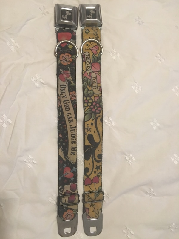 4c782172f497 Used yellow and black neck pet belts for sale in Dollard-des-Ormeaux - letgo