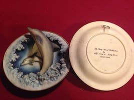 Dolphin 3D collector plate