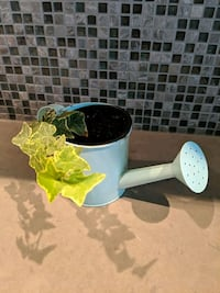Ivy plant with decorative baby blue tin watering can