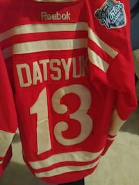 Pavel Datsyuk Detroit Red Wings Jersey Odenton, 21113