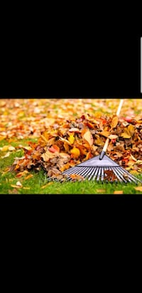 Curb Appeal ! leaf removal Starting at 30$