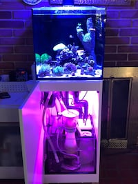 Red Sea reefer nano plus more. No livestock  Alexandria, 22312