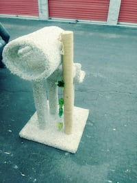 white and green cat tree Westminster, 80003