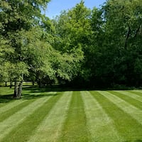 Landscaping Services Charlottesville