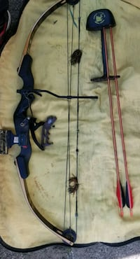 black and brown compound bow Plainwell, 49080