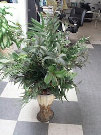 white and brown ceramic plant pot with green plant Bakersfield, 93305