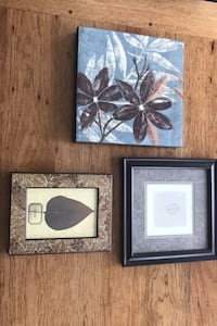 Set of 3 leaf prints/canvas