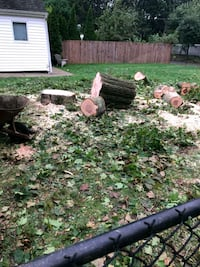 Long island tree work reasonable price 12 year exp Brentwood, 11717