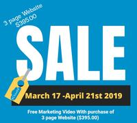 Small Business and Digital Marketing website - FREE MARKETING VIDEO-with purchase of 3 page website ($395.00) Oak Ridge North, 77385