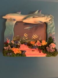 Dolphins picture frame Edgewood, 21040