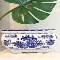 Blue and white orchid planter Silver Spring, 20901