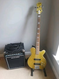 Aria Pro II M series Bass Guitar with Amp Washington, 20018