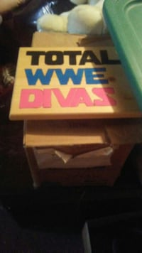 Total WWE Divas wall decor