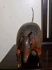 Armadillo taxidermy Donna, 78537