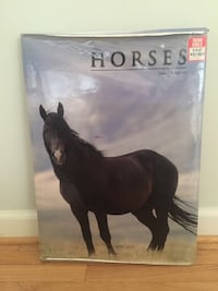 Horse book by James Kingston