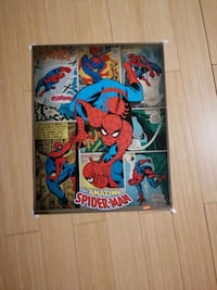 Spider-Man comic panel poster  Guelph