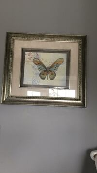 Two silver frame pictures of butterflies  Brampton, L7A 2W5