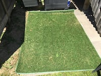 Green carpet outdoor (three for the price of 1) Mississauga, L5M 0H2
