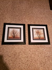Tree pictures. Wall art  Champlin, 55316