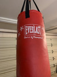 Everlast Punching Bag  Elk Grove, 95624