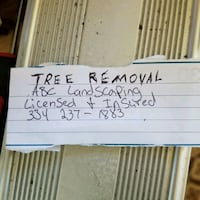 Tree removal and storm cleanup  Panama City, 32405