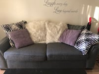 Large 2 cushion couch with 8 decor pillows  Alexandria, 22304
