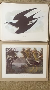 two brown wooden framed painting of birds Eatontown, 07724