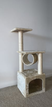 gray and white cat tree واشنطن, 20024