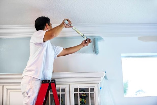 Painting and Drywall repair 02f7dfb3-52a2-441c-8087-2e470354be4c