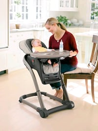 Graco Infant & Regular High Chair Hampton, 23666