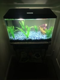 Black framed clear glass fish tank Austin, 78748