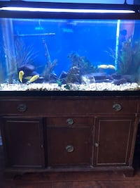 brown wooden cabinet with glass fish tank London, N6C 5R7