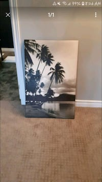 Palm tree canvas pic Wainfleet