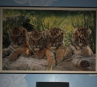 Large tiger cubs photo and frame Virginia Beach, 23464