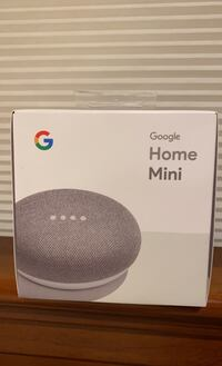 Unopened Google Home Mini, Chalk