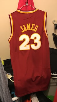 Brand new personally handed to from LBJ 2017 jersey Murfreesboro, 37129