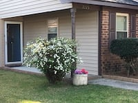 APT For rent 2BR 2BA North Charleston