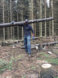 Tree cutting service Melancthon