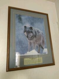 Big Wolf picture Nampa, 83651