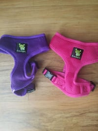 Dog Harness - new ($5 each) with free leash Alexandria, 22304