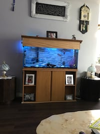 55 gallon comes with everything  London, N6K 1L4