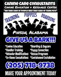 dog training Pinson